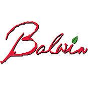 Balwin Properties 1.3.2