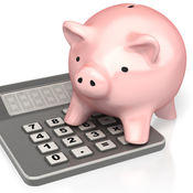 Bank Savings Deposit Calculator