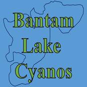 Bantam Lake Cyanos 1