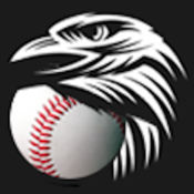 Baseball Eagle-eye