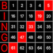 Bingo Light Board 1