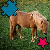 動畫馬和小馬拼...