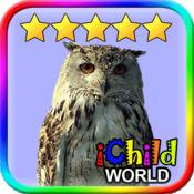 鸟虫世界 - 最佳的学龄前儿童书 2.7