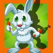 兔子,兔子和疯狂...
