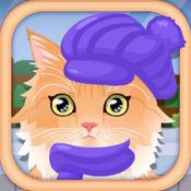 宠物猫的护理沙龙6.0