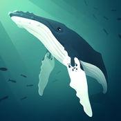 深海水族館