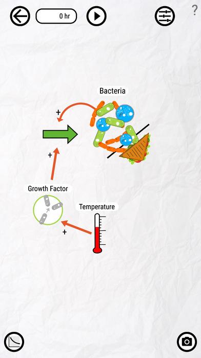 Bacteria Sandwich
