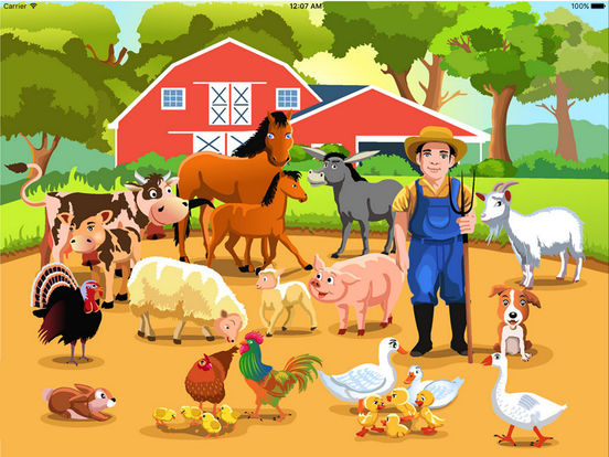 Baby Farm My First Learning English Flashcards