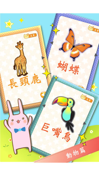 Baby Flash Cards ~ Mandarin