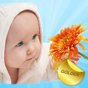 Baby flashcards Golden