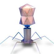 Bacteriophage 3D