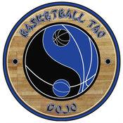 Basketball Tao Dojo 5.57.8