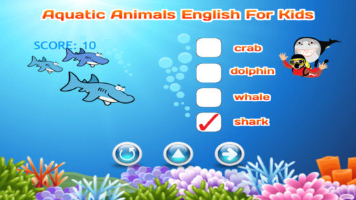 Aquatic Animals Vocabulary English For Kids