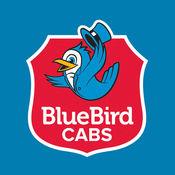 BlueBird Cabs