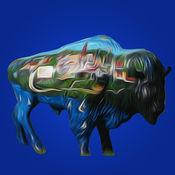 Buffalo763