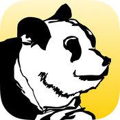 Bus Panda
