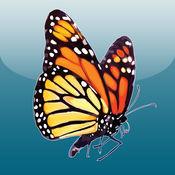 Butterflies Alive 1.2
