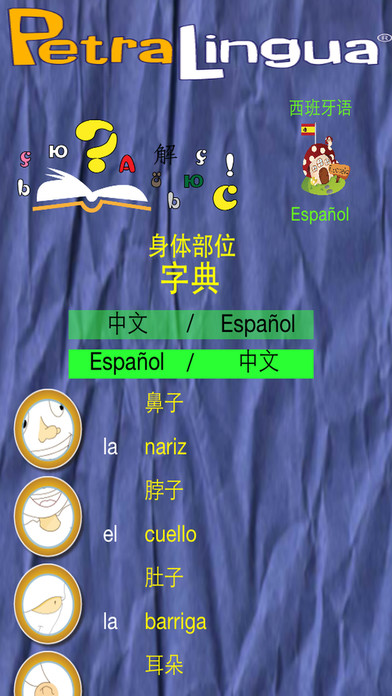身体部位 - PetraLingua® 课程将教您学习基本的 英语, 西班牙语, 法语, 德语, 中文 和 俄语 !