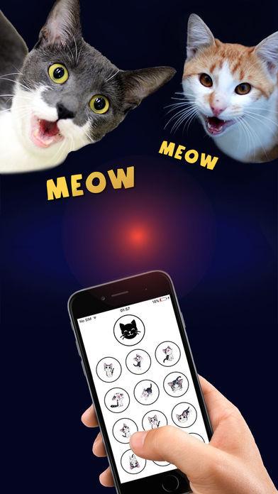 猫译者 - 人到猫的传播者临