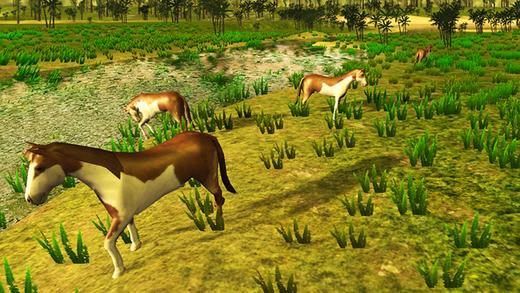 马模拟器 - 终极野生动物