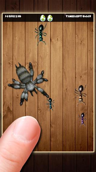 切!经典蚂蚁终结者