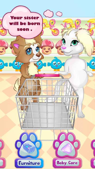宠物派对:洗澡护理宠物