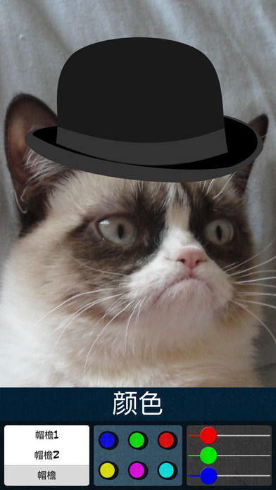 帽子彩色貼紙 - 将帽子加至您的照片,更改它的颜色