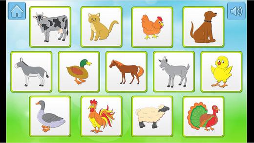 动物,儿童学习记忆