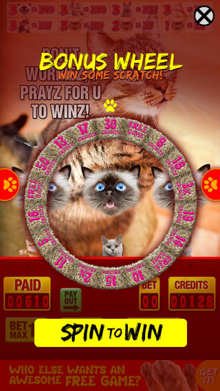 招财猫:最佳老虎机游戏与真正的猫的声音 / Lucky Cat Slots: Top Slot Machine Game with Real Kitty Cats' Sounds—FREE