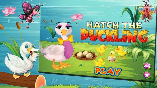 哈奇小鸭 - 疯狂的宠物兽医及保育沙龙游戏为孩子们