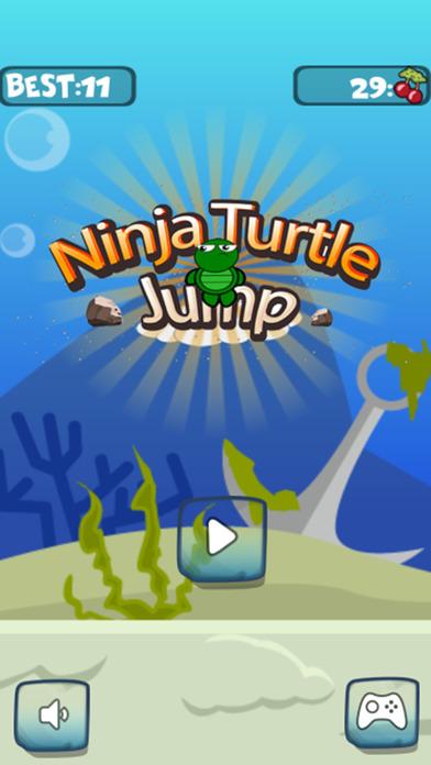 小小的龟忍者跳跃向上和向下的屋顶上