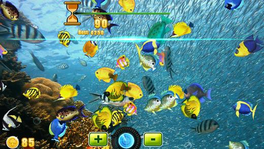 极端的渔获游戏免费的孩子