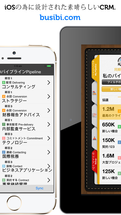 BusiBI CRM 2016 日本語