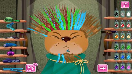 宠物发型设计