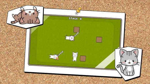 Nobaneko - 伸展的猫 -