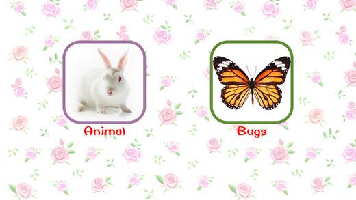 宝宝学英语之动物和昆虫