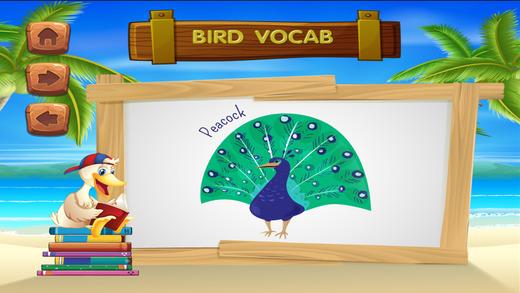 学习动物词汇语音
