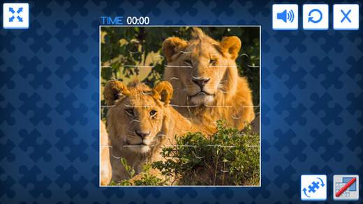 动物世界拼图 - 快乐拼图