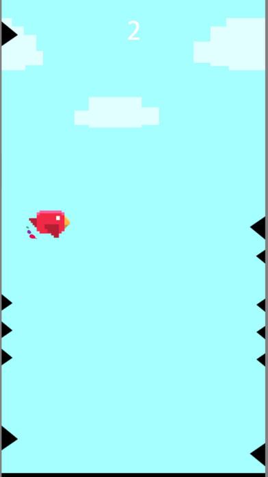 糖果鸟鸟冒险