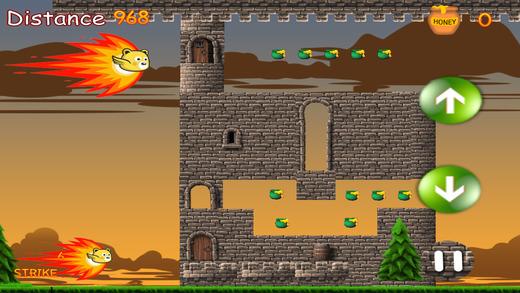 熊愤怒的逃出谜 - 一个有趣的 的飞行游戏
