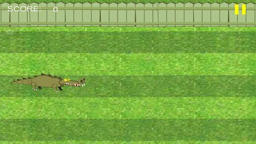 鳄鱼冒险游戏