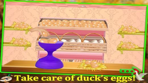鸭子宠物护理&孵化 - 动物水疗沙龙