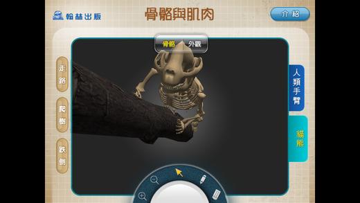 3D骨骼與肌肉