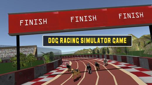 疯狂的狗赛车 - 玩灵狮种族模拟器