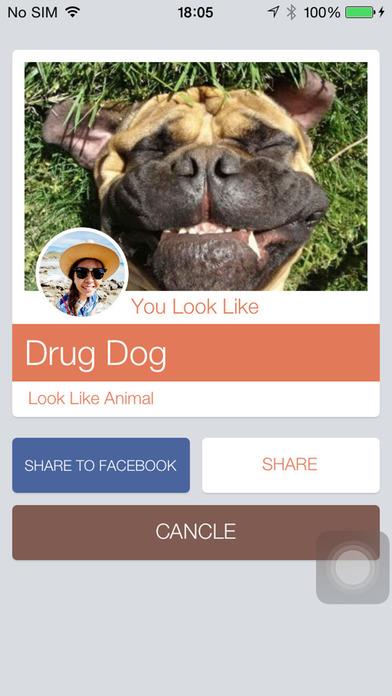 看起来像动物 : Look Like Animal
