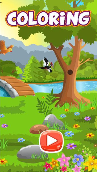野生动物彩图免费
