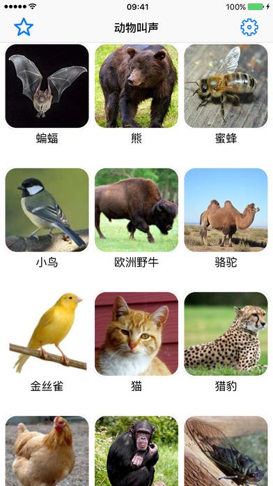 动物叫声专业版 - 大自然的声音老虎音效少儿教育