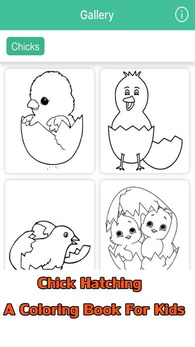 小鸡孵化儿童着色书
