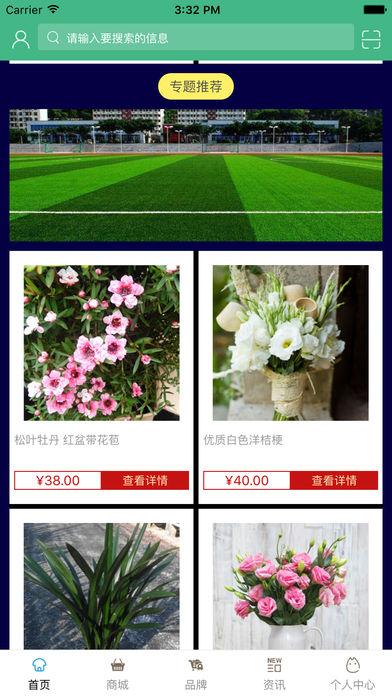 中国人造草坪网