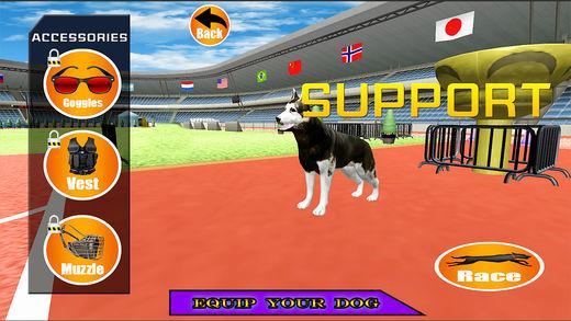狗 赛车 模拟 2017年